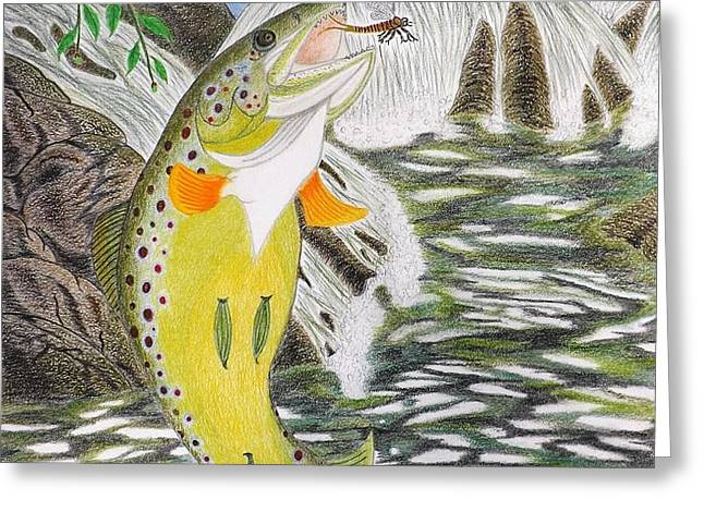 Trout Stream In May Greeting Card by Gerald Strine