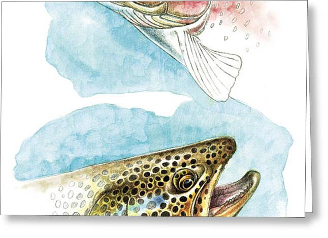 Trout Study Greeting Card by JQ Licensing