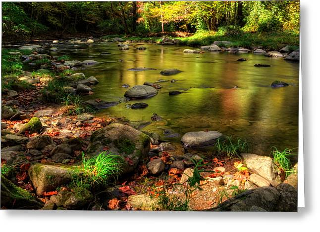 Trout Fishing Greeting Cards - Trout Waters In Fall Greeting Card by Greg Mimbs