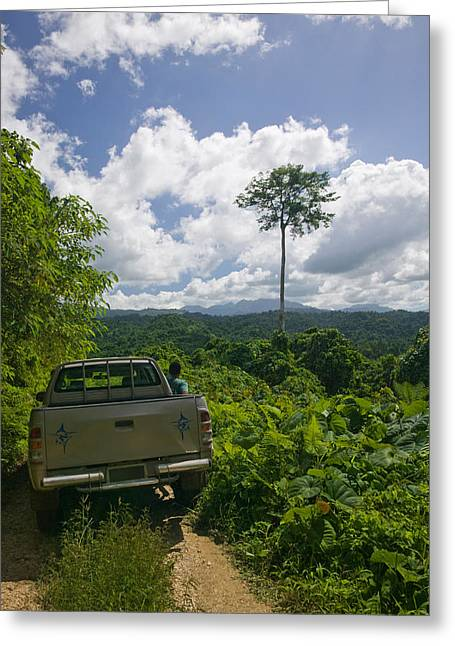 Dirt Image Greeting Cards - Truck A Dirt Road, Malao, Big Bay Greeting Card by Panoramic Images