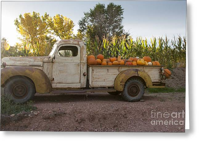 Produce Greeting Cards - Pumpkin Time Greeting Card by Juli Scalzi
