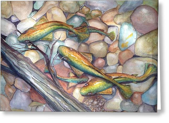 Rainbow Trout Greeting Cards - Truckee River Traffic Jam Greeting Card by Priscilla Greenbaum