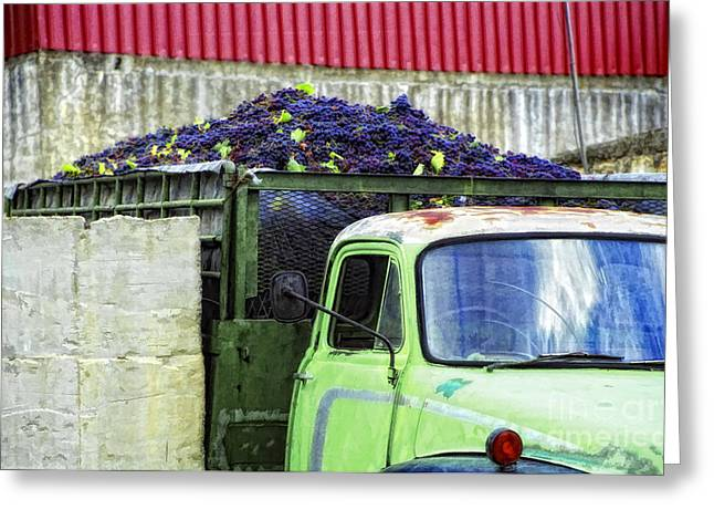 Greece Vineyards Greeting Cards - Truckload Of Grapes Greeting Card by Timothy Hacker