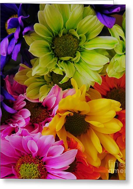 Struckle Greeting Cards - True Colors Greeting Card by Kathleen Struckle
