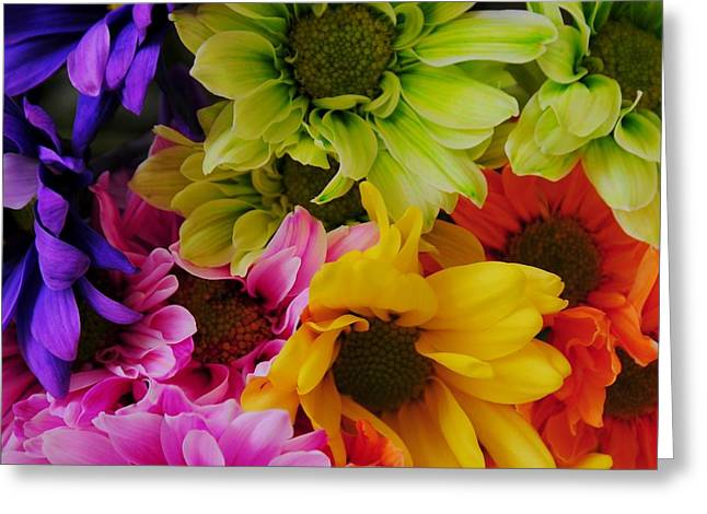 Shower Curtain Greeting Cards - True Colors Greeting Card by Kathleen Struckle