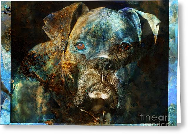 Boxer Dog Greeting Cards - True Colours Greeting Card by Judy Wood
