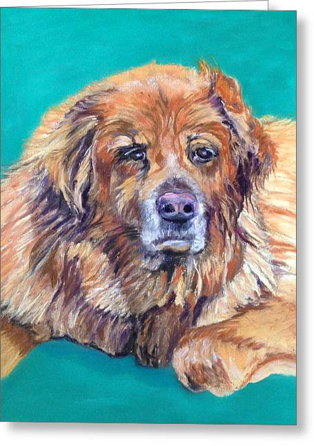 Gray Muzzle Greeting Cards - True Companion Greeting Card by Julie Maas