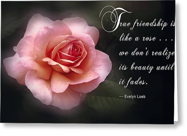 True Friendship Greeting Cards - True Friendship Greeting Card by Daniel Hagerman