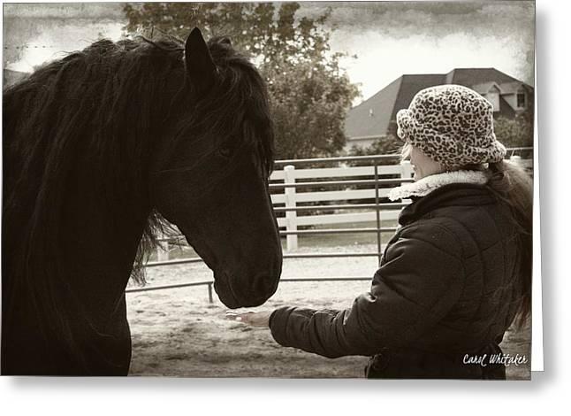 Best Sellers -  - Owner Digital Art Greeting Cards - True Love Greeting Card by Royal Grove Fine Art