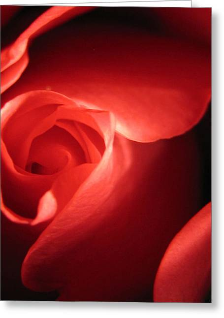True Love Greeting Cards - True Love Greeting Card by Tracy Male