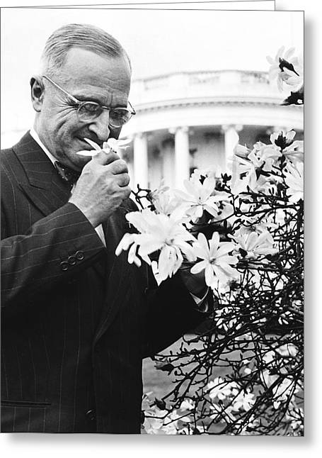 Truman Smells A Flower Greeting Card by Underwood Archives