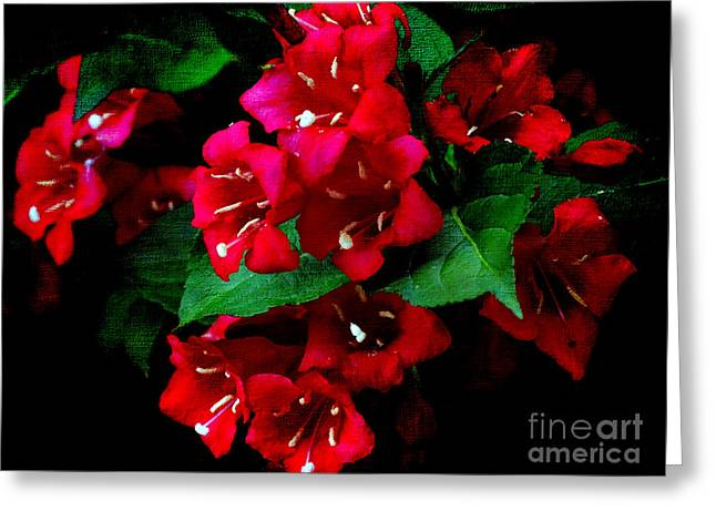 Stigma Greeting Cards - Trumpet Creeper Greeting Card by Gena Weiser