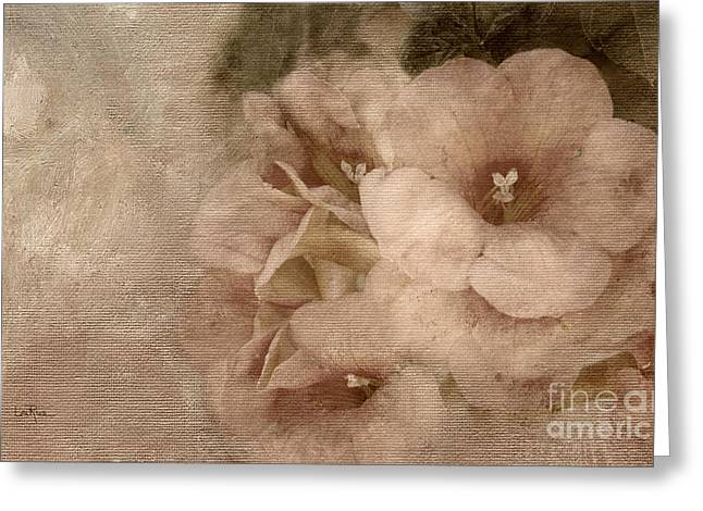 Floral Photographs Mixed Media Greeting Cards - Trumpet Flowers #1 Greeting Card by Betty LaRue