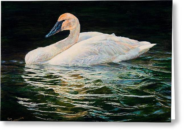 Swans... Greeting Cards - Trumpeter of Spring Greeting Card by Pam Earleywine