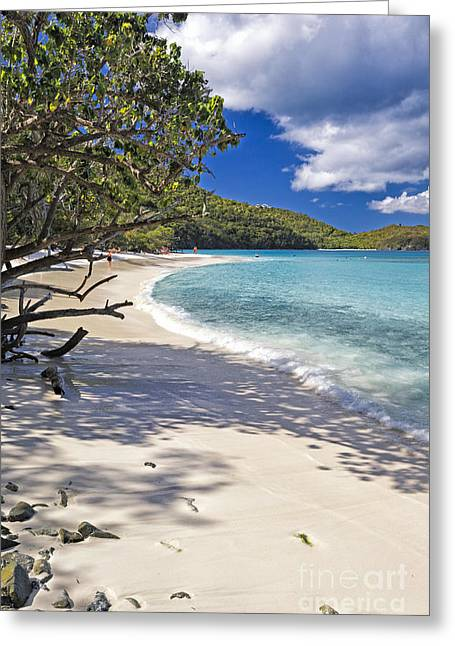 Caribbean Corner Greeting Cards - Trunk Bay Seclusion Greeting Card by George Oze