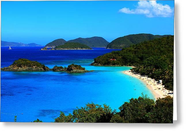 Virgin Pyrography Greeting Cards - Trunk Bay St John US Virgin Islands Greeting Card by Justin Bittner