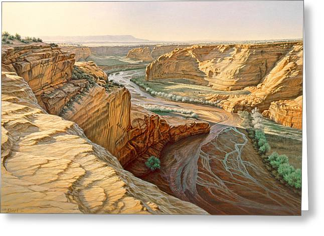 Navajo Greeting Cards - Tsegi Overlook - Canyon De Chelly Greeting Card by Paul Krapf