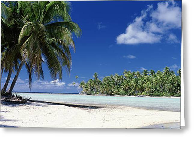 Striking Photography Greeting Cards - Tuamotu Islands French Polynesia Greeting Card by Panoramic Images