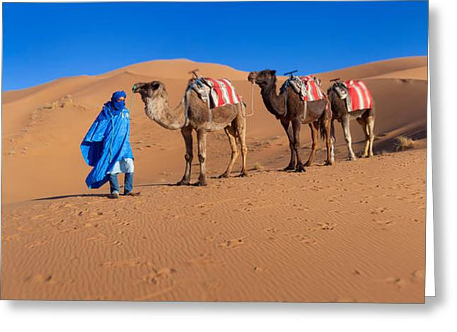 Berber Man Greeting Cards - Tuareg Man Leading Camel Train Greeting Card by Panoramic Images