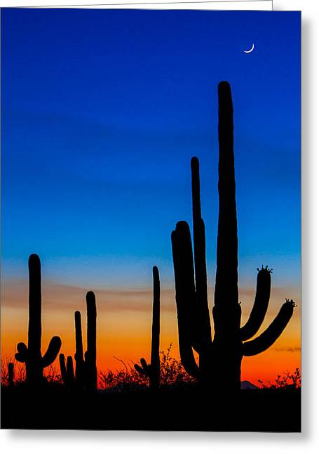 Moonrise Greeting Cards - Tucson Sunset Greeting Card by Chris Austin
