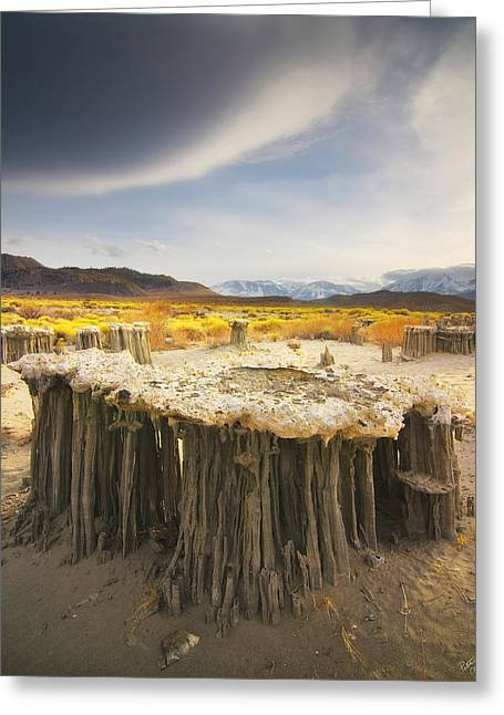 Mono Greeting Cards - Tufa Time Greeting Card by Peter Coskun