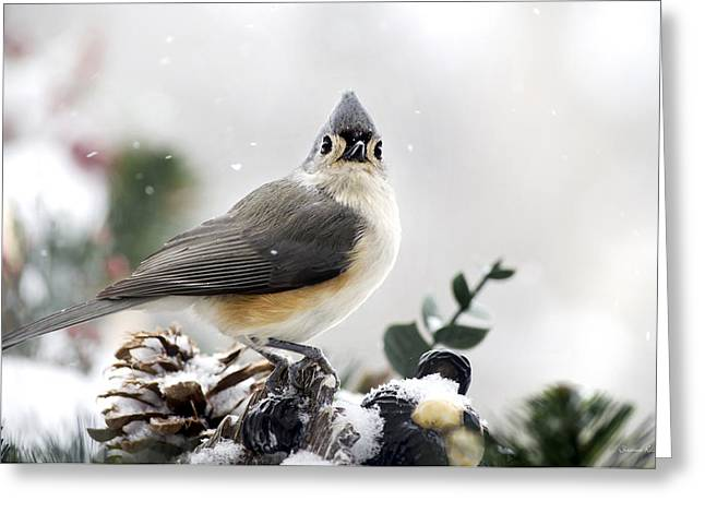 Tufted Titmouse In The Snow Greeting Card by Christina Rollo