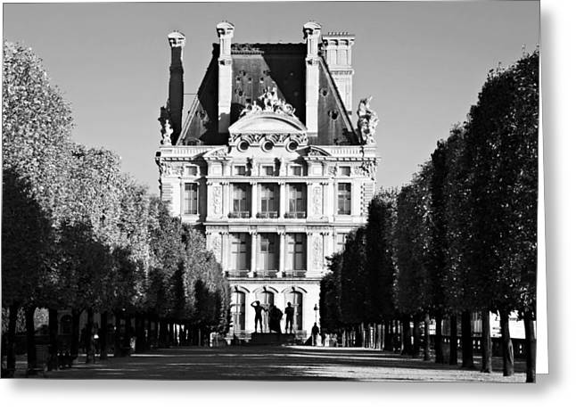 Tuileries Greeting Cards - Tuileries Gardens and The Louvre - Paris Greeting Card by Barry O Carroll
