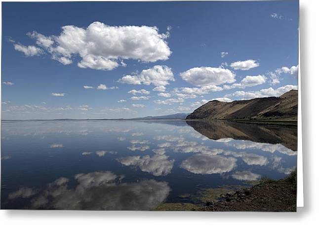 Siskiyou County Greeting Cards - Tule Lake in Northern California Greeting Card by Carol M Highsmith