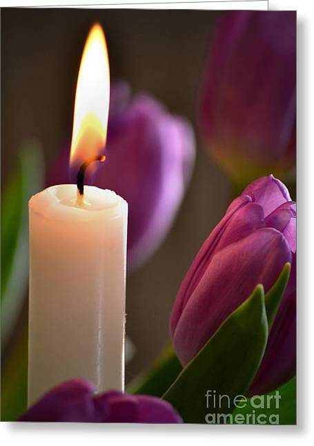 Candle Lit Greeting Cards - Tulight Greeting Card by Deb Halloran
