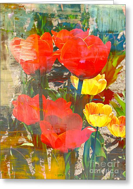 Abstract Tulips Greeting Cards - Tulip Abstracts Greeting Card by Carol Groenen