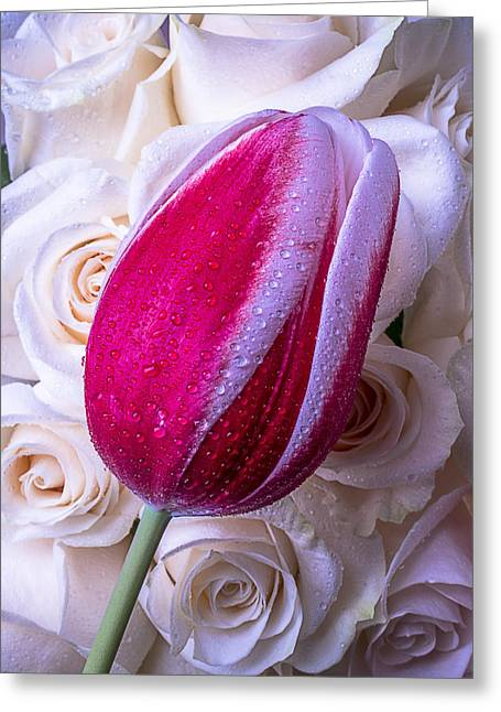 Rose Stem Greeting Cards - Tulip and Roses Greeting Card by Garry Gay