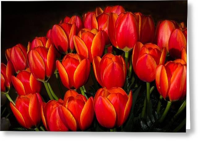 Tulip Bouquet Greeting Card by Brian Xavier