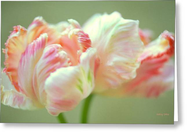 Apricot Greeting Cards - Tulip Dance Greeting Card by Kathy Yates