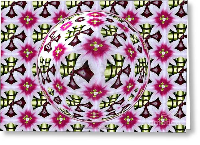 Glasses Reflecting Digital Greeting Cards - Tulip Kaleidoscope Under Glass Greeting Card by Rose Santuci-Sofranko