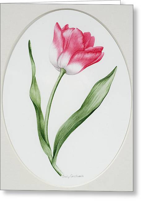 Border Greeting Cards - Tulip Meissner Porzellan Singe Greeting Card by Sally Crosthwaite