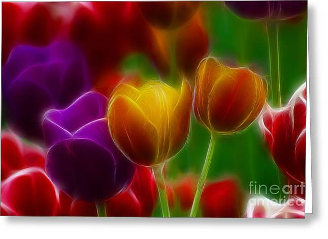 Gingrich Photography Digital Art Greeting Cards - Tulips-7060-Fractal Greeting Card by Gary Gingrich Galleries