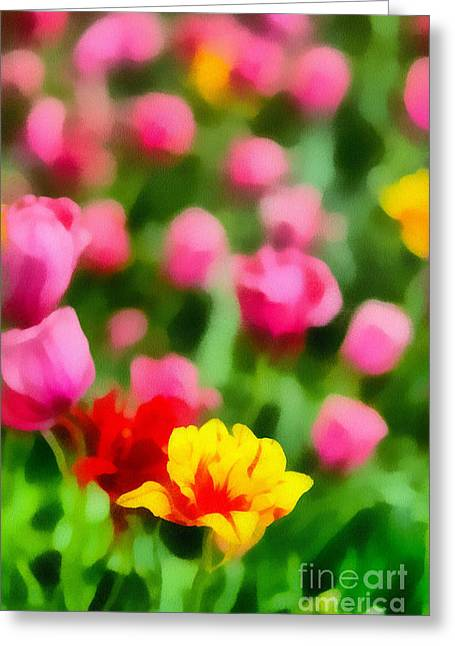 Petal Greeting Cards - Tulips Greeting Card by Amy Cicconi
