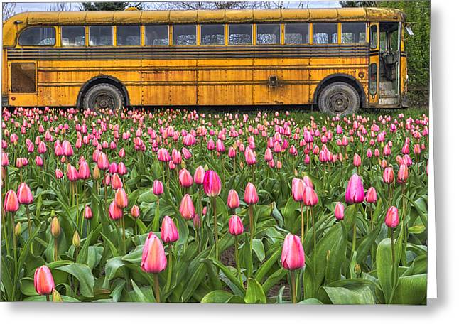Tulip Fields Greeting Cards - Tulips and Old Bus Greeting Card by Mark Kiver