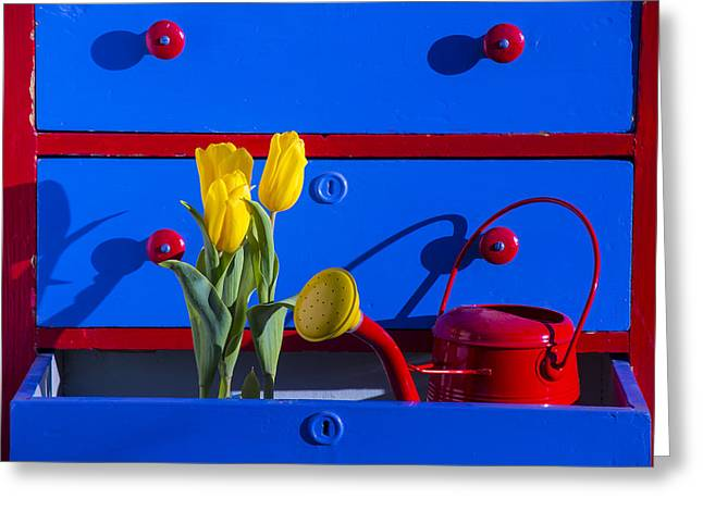Watering Can Greeting Cards - Tulips and watering can  Greeting Card by Garry Gay