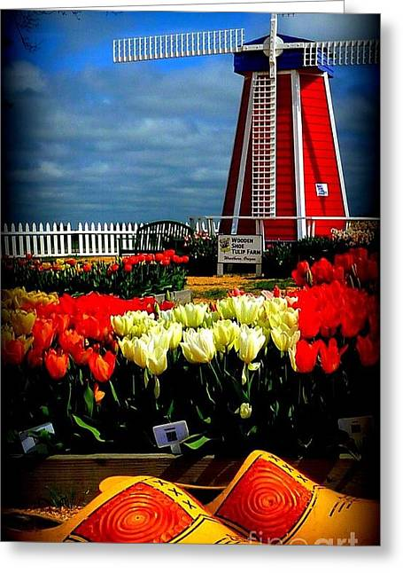 Tulips And Windmill Greeting Card by Susan Garren