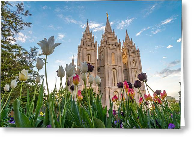 Temple Square Greeting Cards - Tulips at the Temple Greeting Card by Dustin  LeFevre