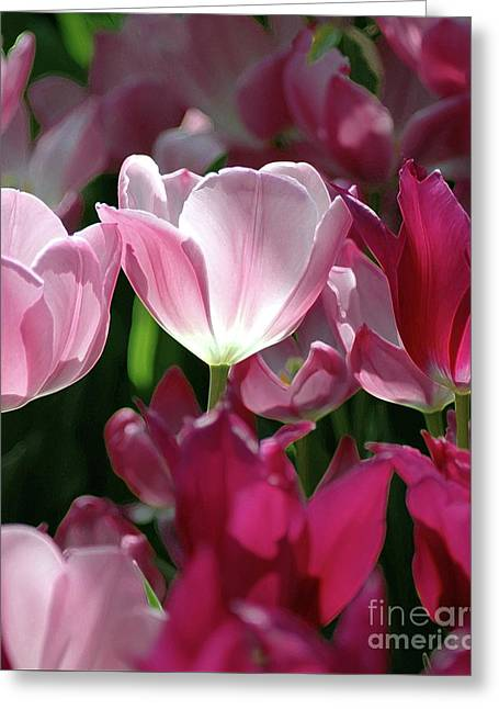 Tulips For Spring Greeting Card by Kathleen Struckle