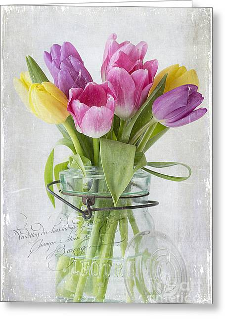 Cindi Ressler Greeting Cards - Tulips in a Jar Greeting Card by Cindi Ressler