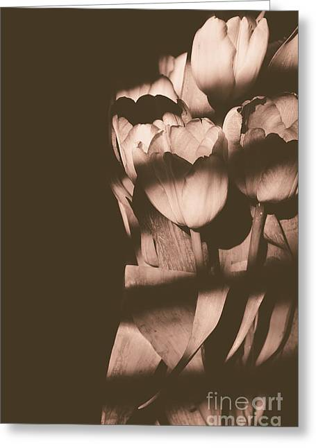 Grey Scale Greeting Cards - Tulips in the Light III Greeting Card by Chris Ann Wiggins
