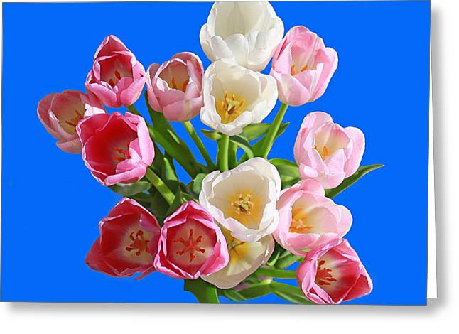 Tulips  Just  For  You Greeting Card by Carl Deaville