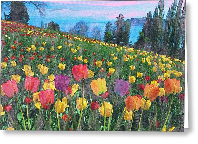 Caruso Greeting Cards - Tulips Lake Greeting Card by Anthony Caruso