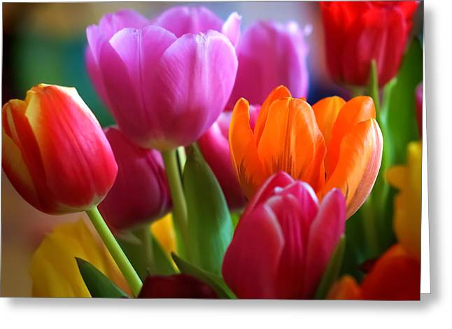 Flora Greeting Cards - Tulips Light Greeting Card by Lutz Baar