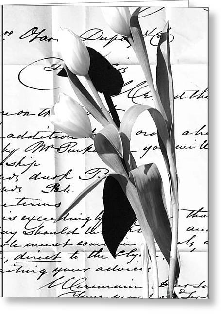 Love Letter Mixed Media Greeting Cards - Tulips on Old Love Letter Greeting Card by Anahi DeCanio