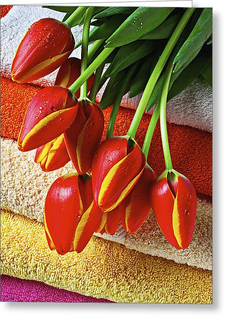 Wet Tulip Greeting Cards - Tulips on stack of bath towels Greeting Card by Garry Gay