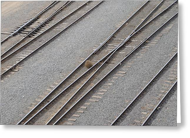 Rail Siding Greeting Cards - Tumble Weed In The Rail Yard Greeting Card by Charlie Day
